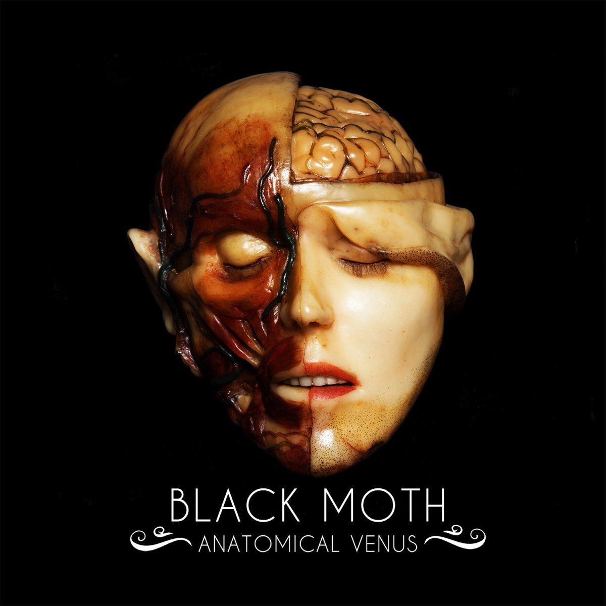 BLACK MOTH - FROM DOOM CATERPILLAR TO RIFF LADEN BUTTERFLY ON ANATOMICAL VENUS